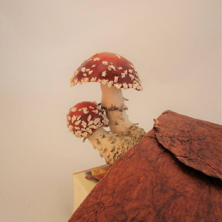 Red mushroom bookmark