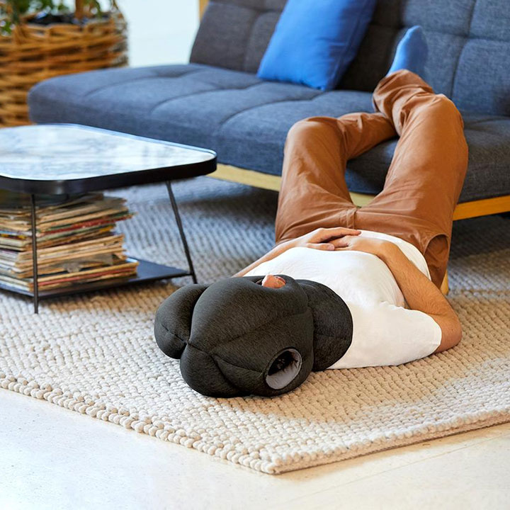 Ostrich privacy nap pillow
