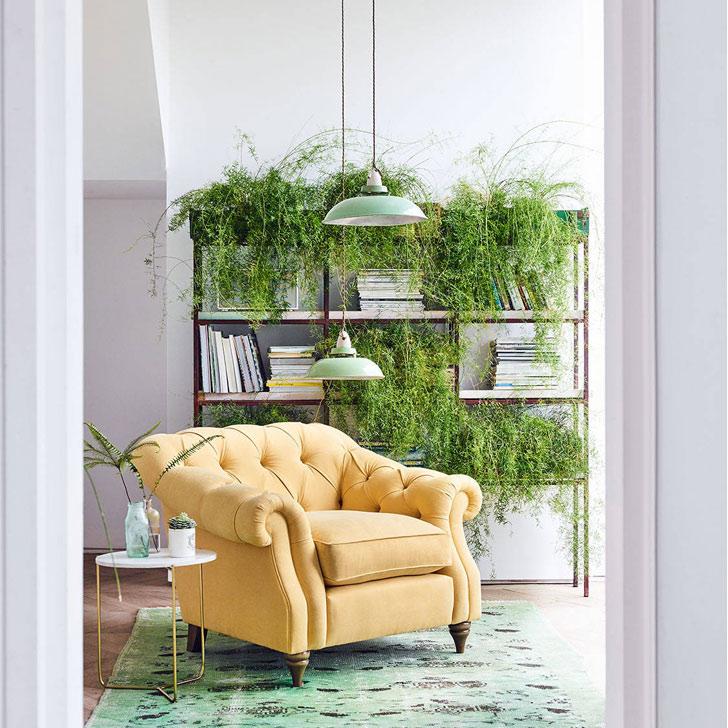 biophilia greenery trend 2019