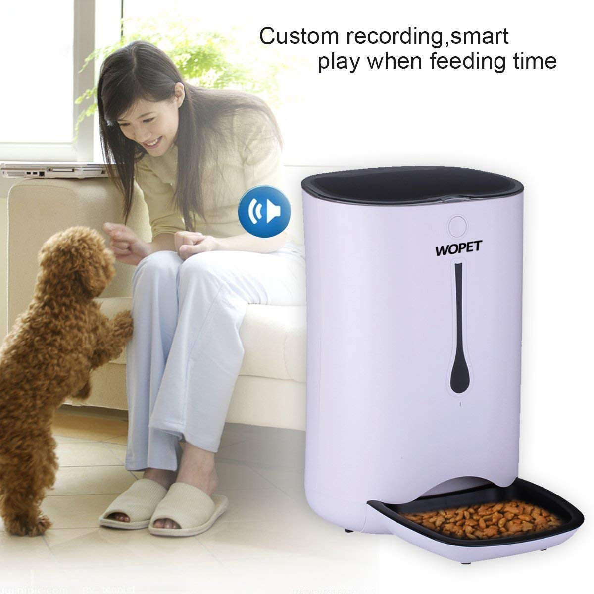 automatic timed dog food dispenser