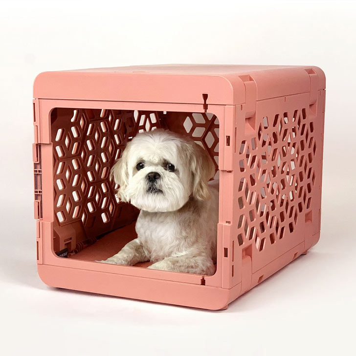 collapsible dog crate for small space