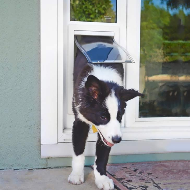 fast fit pet patio balcony doggy door for an apartment
