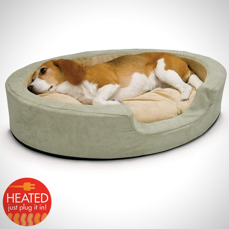 heated dog bed for small apartment