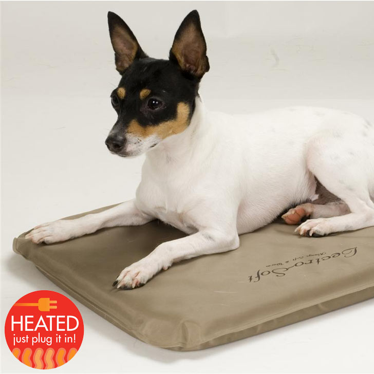 heated dog bed pad for small apartment