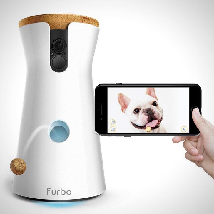 wireless treat dispensing dog pet camera