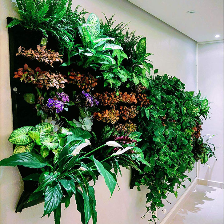 wall planter accent wall