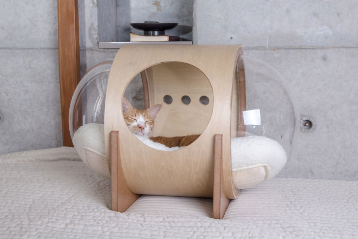 myzoo spaceship beta cat bed