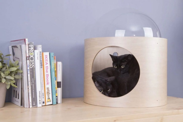 myzoo spaceshio beta cat bed