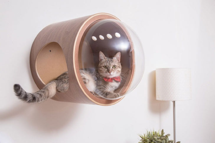 myzoo spaceship gamma cat bed