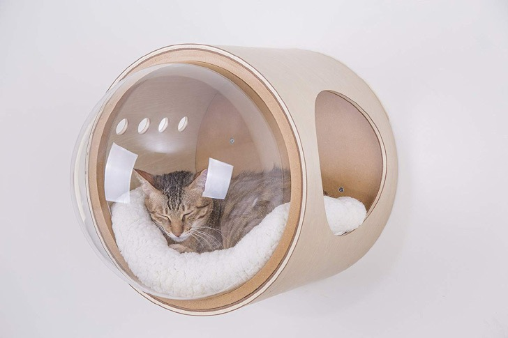 myzoo spaceshio gamma cat bed
