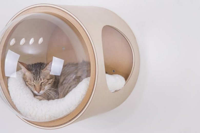 spaceship cat beds
