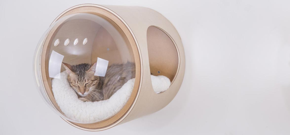 Spaceship Cat Beds For A Stellar Feline Astronaut