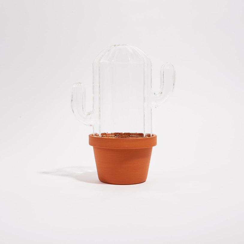 cactus-shaped terrarium
