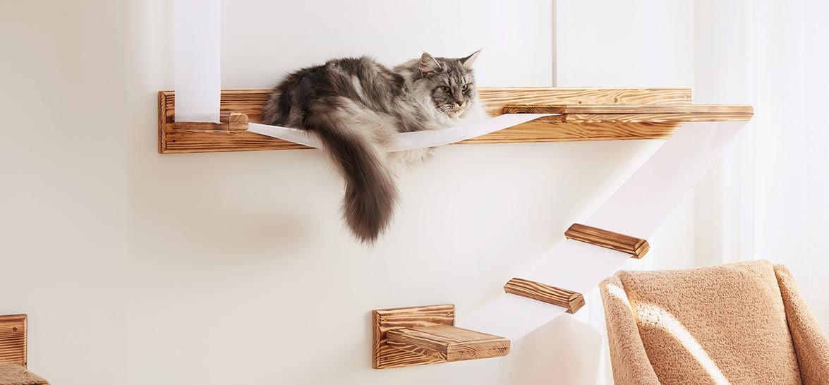 15 Best Cat Trees For Small Spaces Here are the absolute best cat trees for small spaces separated into categories for old kitties, large cats, couch-destroyers, and kittens that live in tiny apartments.