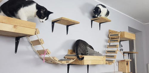 wall-mounted cat tree for small spaces