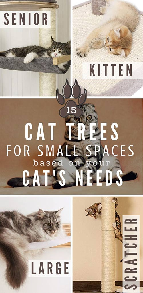 cat trees for small spaces
