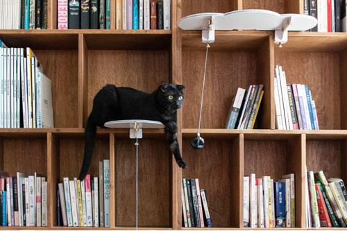 catssup cat tree bookshelf