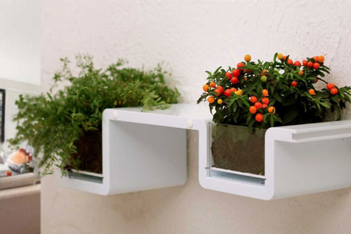 planter shelves