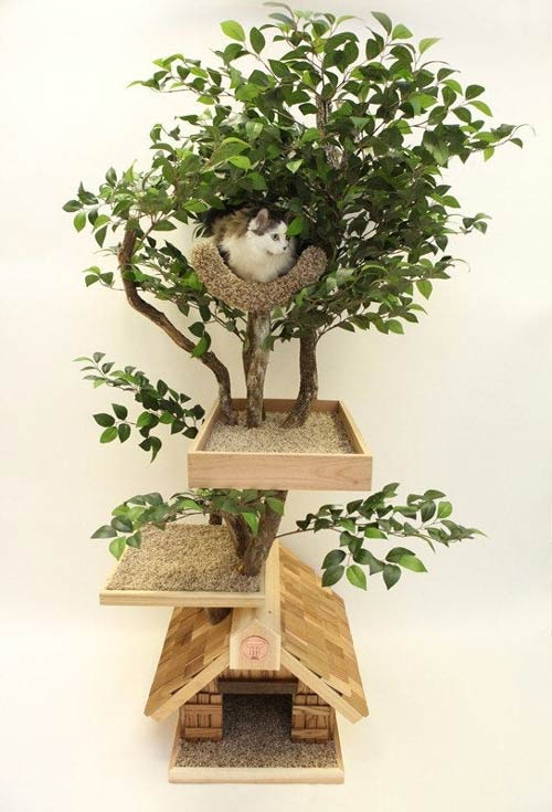 real tree cat tree