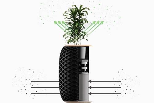 air purifier planter pot