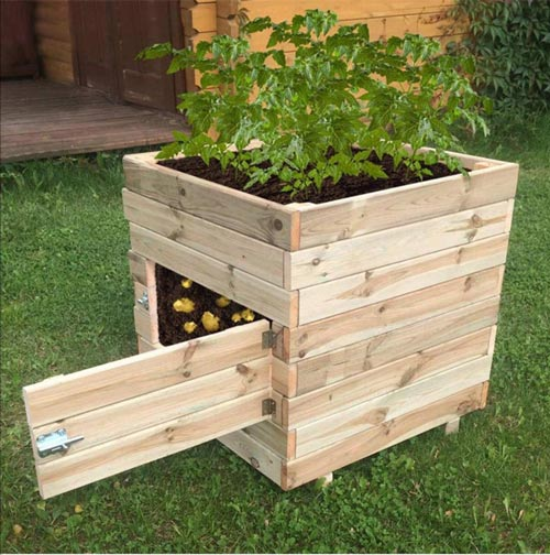diy potato planter