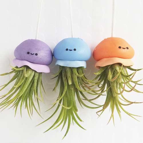 airplant jellyfish hanging planter