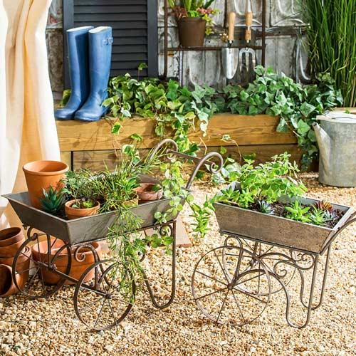 decorative wheelbarrow indoor gardening