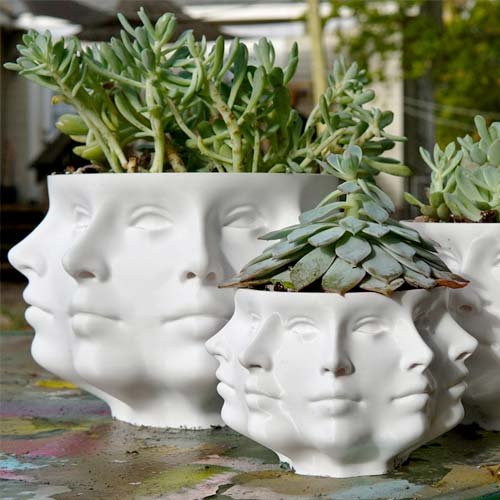 eclectic face planter for indoor gardening