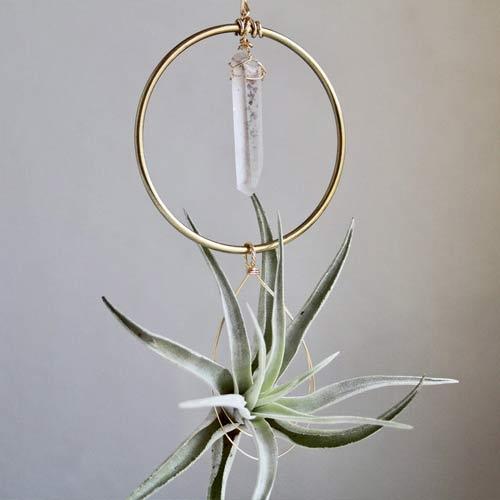 hanging crystals airplants indoor garden ideas