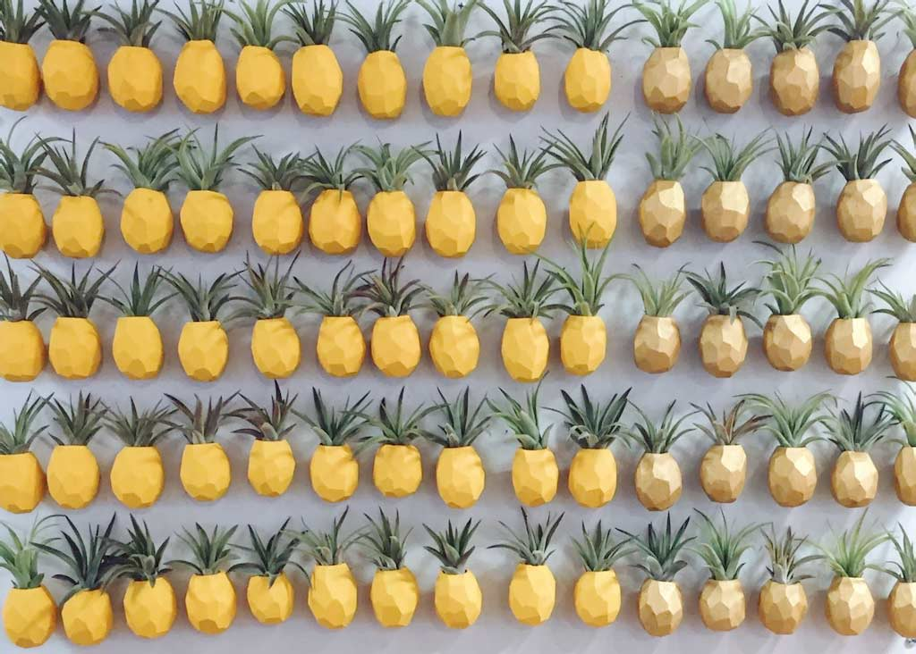 Pineapple Magnetic Planters Yes, there are also these pineapple magnetic planters that will have Sponge Bob Square Pants theme stuck in your head every day and without fail.