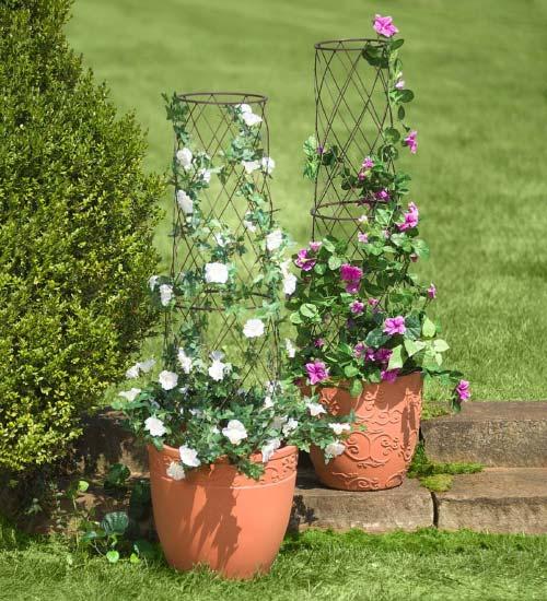 planter pot trellis balcony garden
