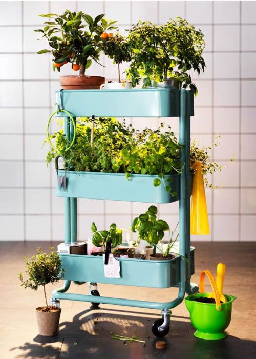 utility cart filled with indoor gardening ideas
