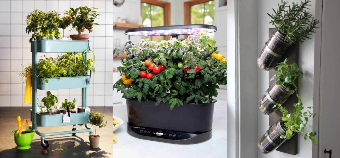 31 Indoor Gardening Ideas For Small Apartments We'll look at some indoor vegetable gardens, hanging wall plants, plants for both beginners and gardening veterans. Most importantly, all these ideas are perfect for small spaces, starting from magnetic pots for fridges and ending with plant towers that can grow tons of strawberries.