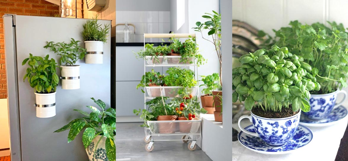 17 Herb Garden Ideas To Add Flavor To Your Life