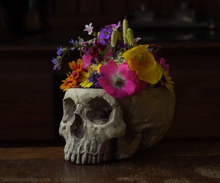 skull vase planter