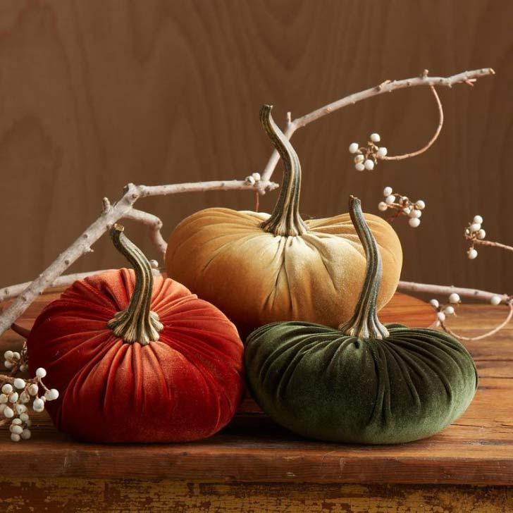 velvet pumpkin set