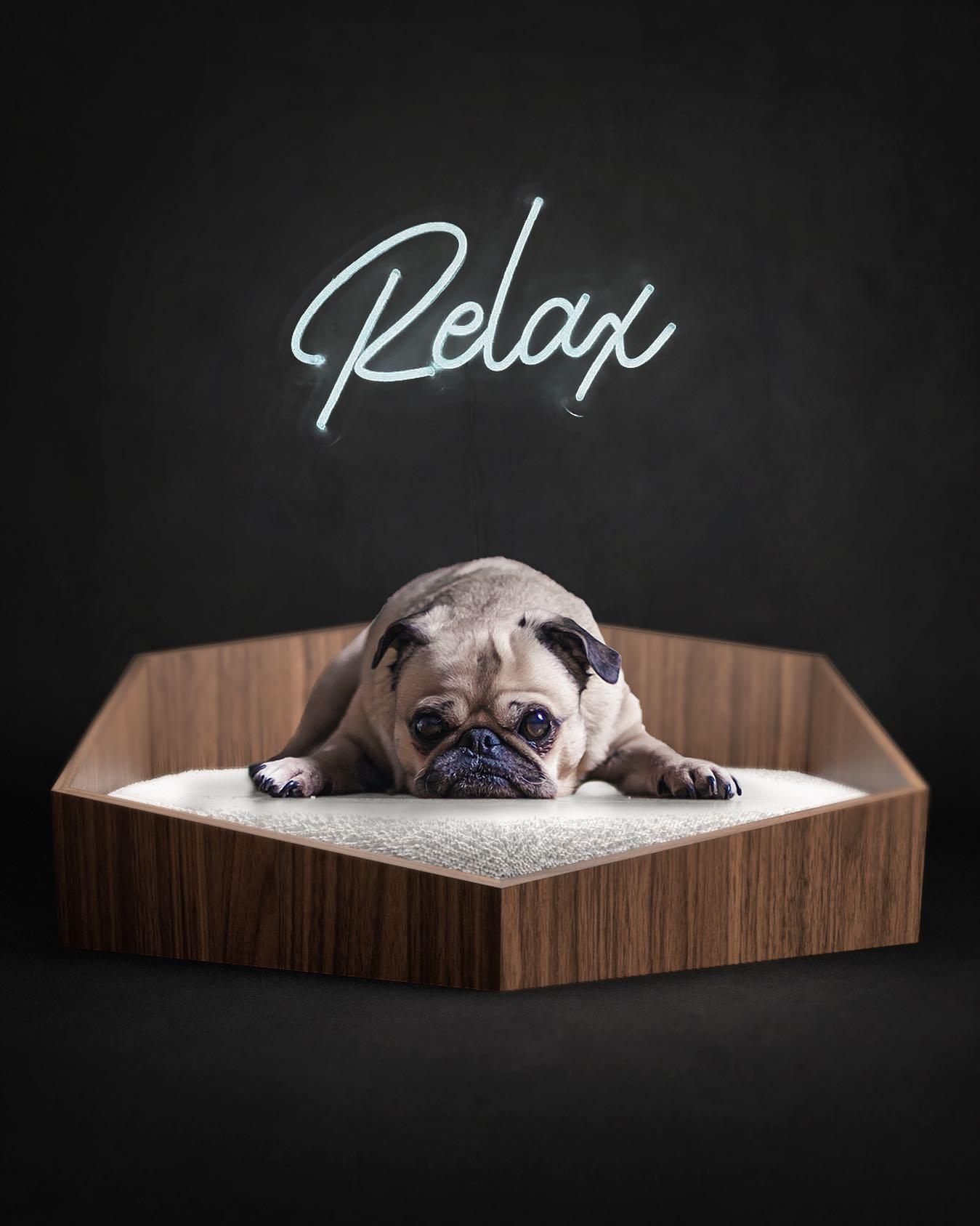 high-end dog beds
