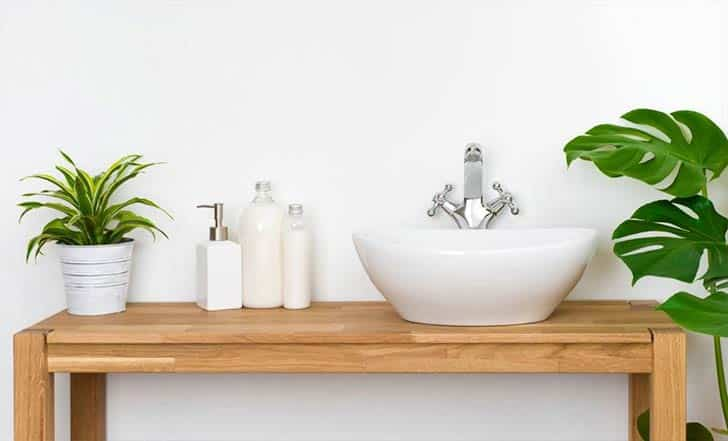 greenery plants in a bathroom decor